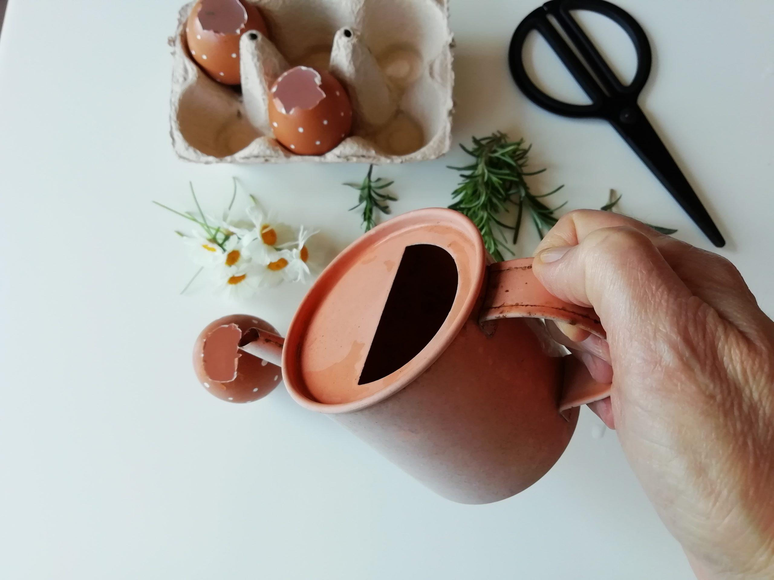 laboratorio floreale Pasqua acqua nell'uovo