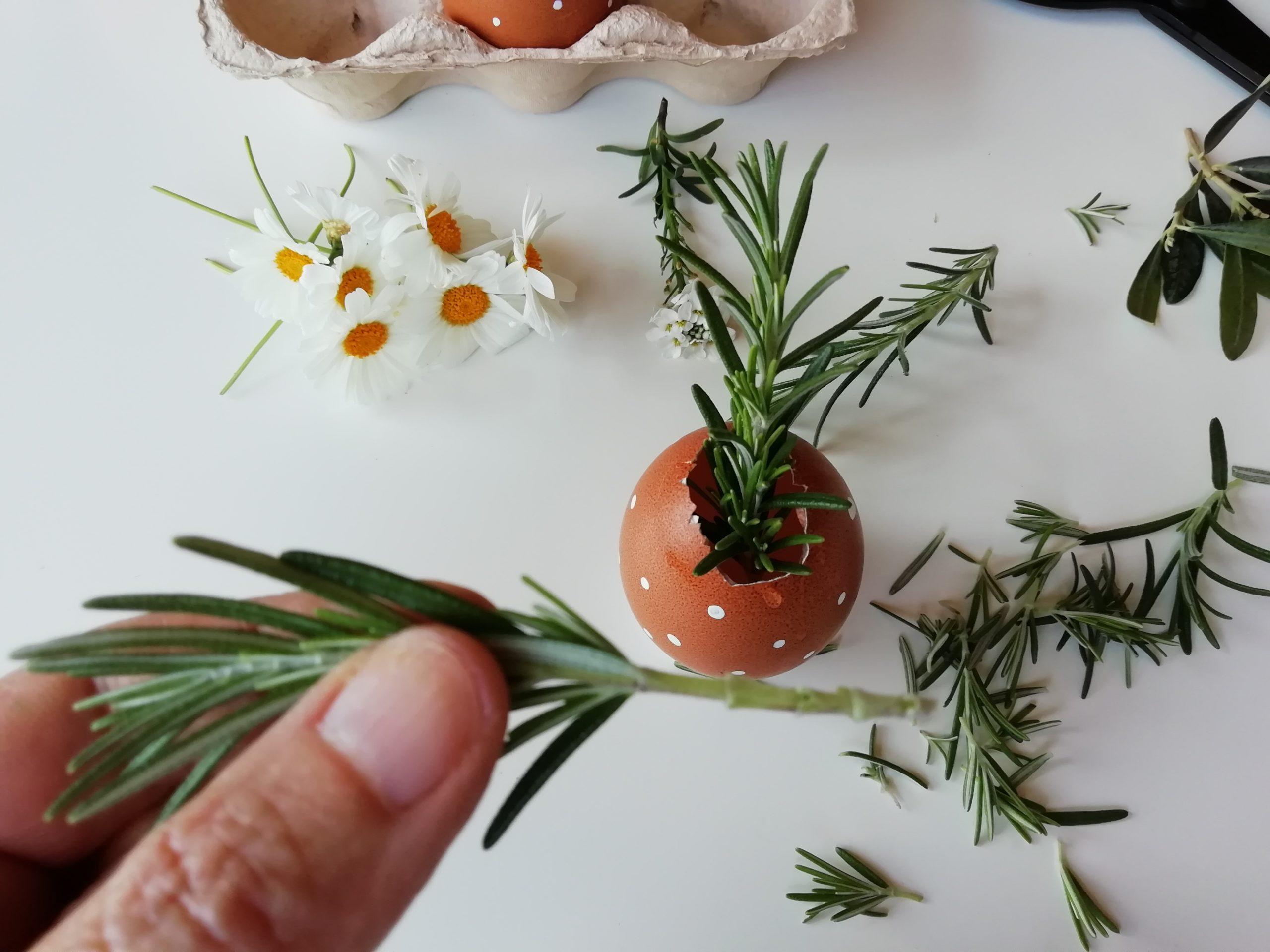 laboratorio floreale Pasqua rametti verdi